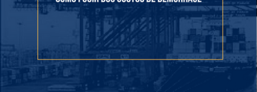 FRETE INTERNACIONAL: COMO FUGIR DA DEMURRAGE KOTAH BR